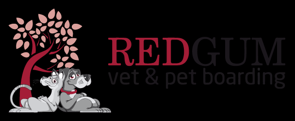 Redgum Vet & Pet Boarding|Health Services | Veterinary Hospital - Sydney