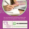 My Assignment Experts: Assignment Writing Service by Experts